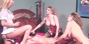 Irresistible dyke whips tied up babe before eaten out