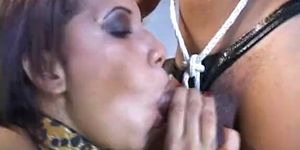 Transsexual extreme 5