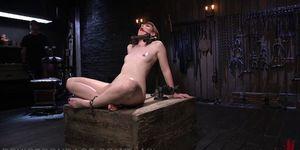 Free black porn sex - Strict bondage and sadistic flogging
