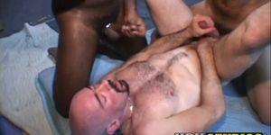 Restrained hairy homo breeding in interracial threesome
