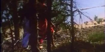 Fabodjantan aka Come Blow the Horn 1978
